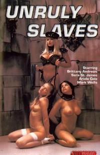 B&D Pleasures – Unruly Slaves DVD