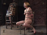 Insex – Model 211's Live Feed