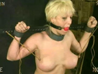 Insex – Interrogation