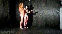 Slave Punishment Board Cleared – Abigail Dupree