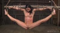 Barn Exercises - Wenona