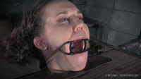 Bonnie Day Chatter Bitch, Part 2 – BDSM, Humiliation, Torture