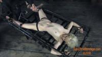 Gluten For Punishment Sarah Jane Ceylon (video, spank, spa, new)