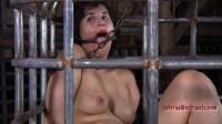 Frogged Down Marina Pd