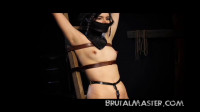 BrutalMaster — Cono — Electrical Experiment Slut