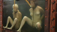 Insex - Tank Girls (411, Angelica)