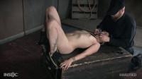 Vulvastic