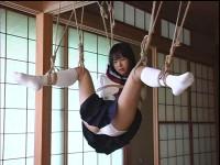 Air exposition blame hanging omnibus