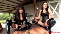 Alexis Grace - Ball Shocked Ass Licking Bitch (February 23, 2013)