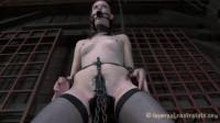 Captive Barn Trials | Dixon Mason, Hazel Hypnotic