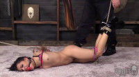 SocietySM DungeonCorp Holly Hendrix
