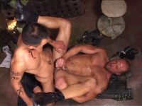 Anal Compilation With Brandon Lee