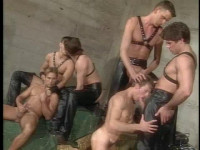 Best Gangbang Collection