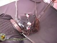 Lady Serena Leatherized