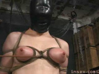 YXs Debut Live Feed - InSex