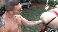 Dick Wadd Productions – Wet Muscle Pigs (2010)