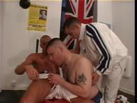 Triga — British Boxers
