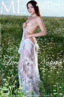Colombian Princess, Lace In Nature, Scholarly, Orange Cream