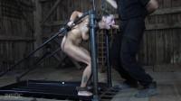 Humiliation Slut (Bonus) (tit, sucking, play, room)