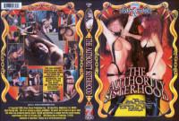 Bruce Seven - Authority Sisterhood
