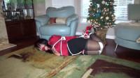 Hunterslair - Gigi - What Santa left for the Hunter gift wrapped under the tree