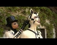 KPG -  White Ponygirl