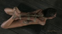 Skin Diamond (video, vid, body).