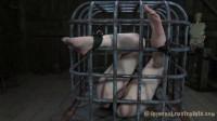 vid body (Cage Tales).