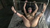 SexuallyBroken - Cutie Casey Calvert strictly bound