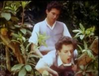 Sacre College — Guy Bourgeois, Guy Bourgeois, Alexandre del Faro (1982)