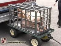 NakedGord-Charlotte Pichard Caged Part 2(15 Jan 2010)