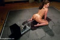Download Talk Dirty to Me: Phoenix Marie Full Throttle Fucking
