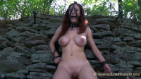 Stone Cold Bitch - Iona Grace
