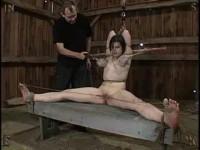 Insex - Kunt Log 2 - Pig Barn Live Feed - Piglet, 731