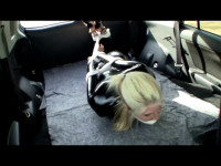 Holly Wood Captured Catburglar - vid, breasts, doggy.