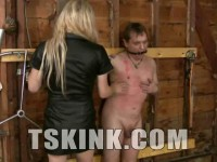 Slave Training With TS Mistress Jesse - tit, style, thick, hot