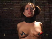 The Best Clips Insex 2004 - 10. Part 42.