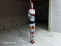 LadyBoss Duct Tapes Slacking Secretary