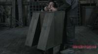 Bitch in a Box