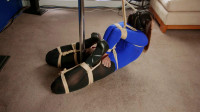 Restricted Senses – Hemp Rope Pole Hogtie