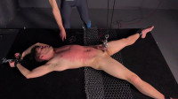 Whipped, Shocked, Stretched - Wyatt - Full HD 1080p