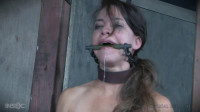 False Pretenses (vid, strap, something, bdsm)