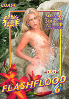 Download Flash Flood 6 (2002)