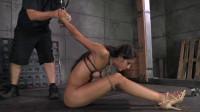 Lyla Storm Brutally Bound In Strict Strappado - best, huge, hair, very, cums