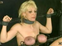 Insex - Interrogation