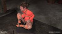 SexuallyBroken - February 15, 2016 - Darling - Matt Williams - Jack Hammer.720p