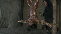 Professional Body Builder, bound, oiled