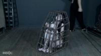 InfernalRestraints - Obedience - Lydia Black 720p