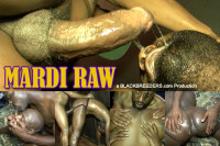 Download Black Breeders - Mardi Raw
