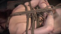 Realtimebondage - Jun 07, 2014 - Ashley Lane - Cunt Puppy Part 2 - Ashley Lane